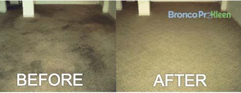 Bronco Pro Kleen Carpet Cleaning Denver Co Call 303 732 8577