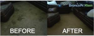 Carpet Cleaning Denver