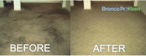 Denver Carpet Cleaning